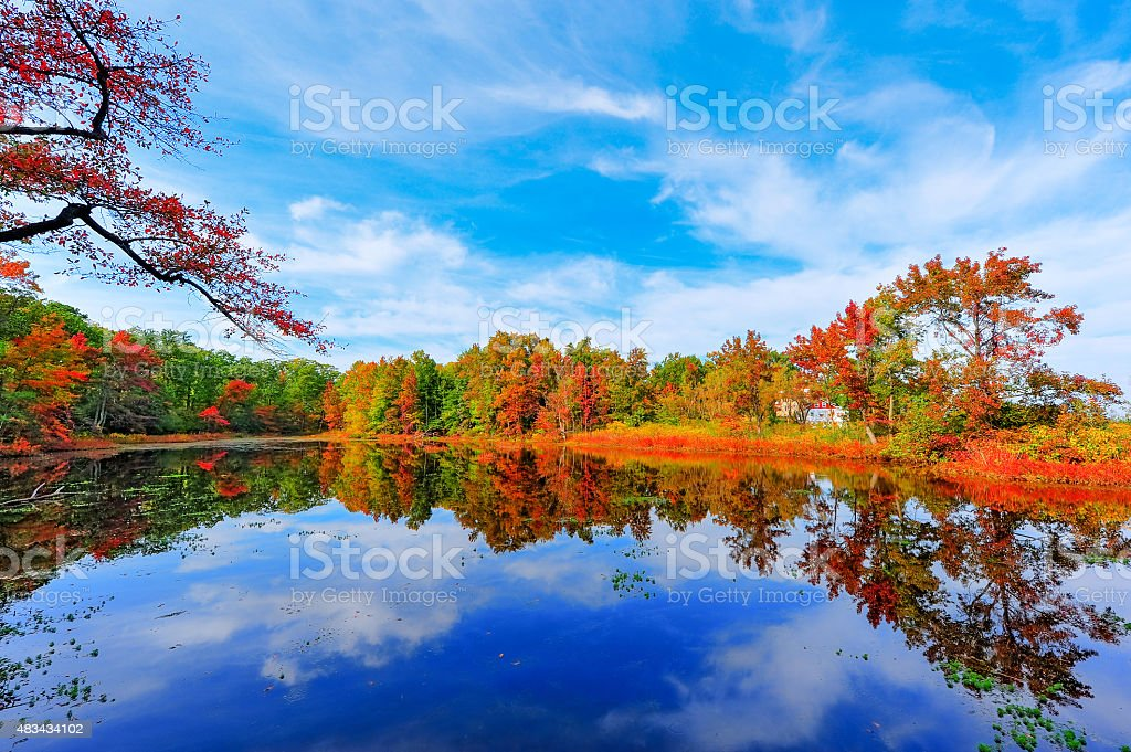 Autumn Reflections in a pond near the Chesapeake Bay, Maryland stock photo