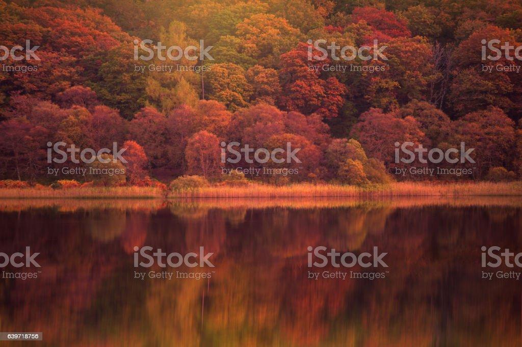 Autumn reflections in Upper lake,Ireland stock photo