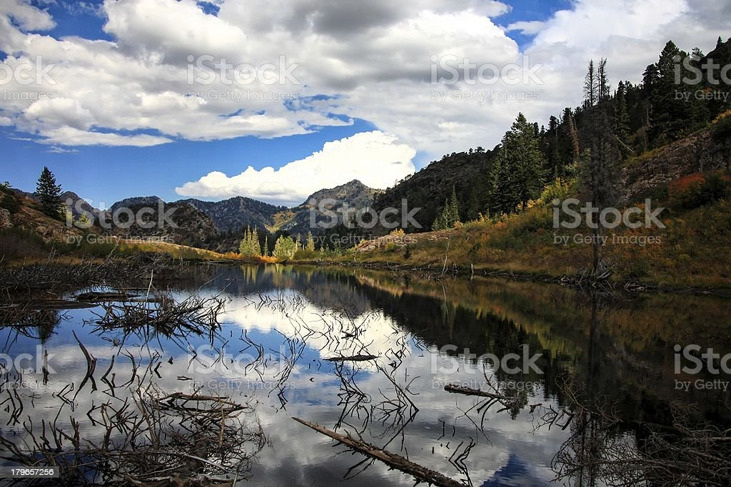 Autumn Reflections on th Beaver Pond royalty-free stock photo