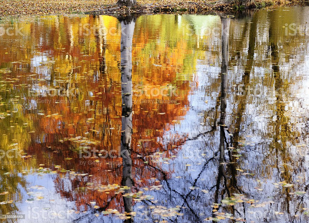 Autumn reflections royalty-free stock photo