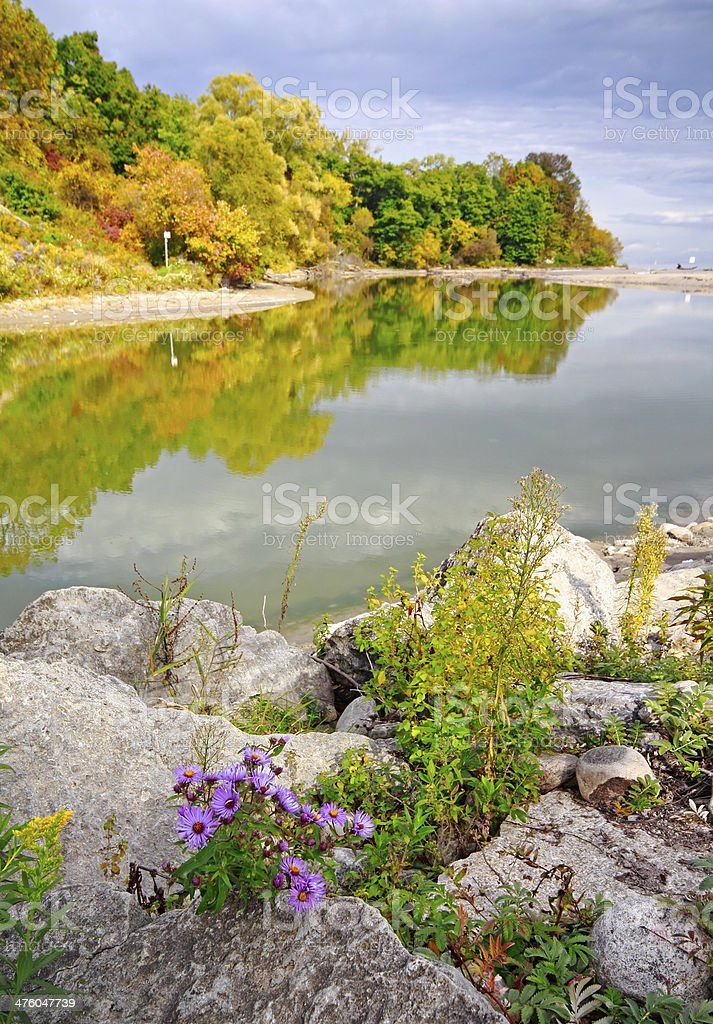 Autumn Reflections royalty-free stock photo