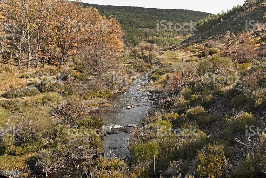 Otoño río. Caída - foto de stock