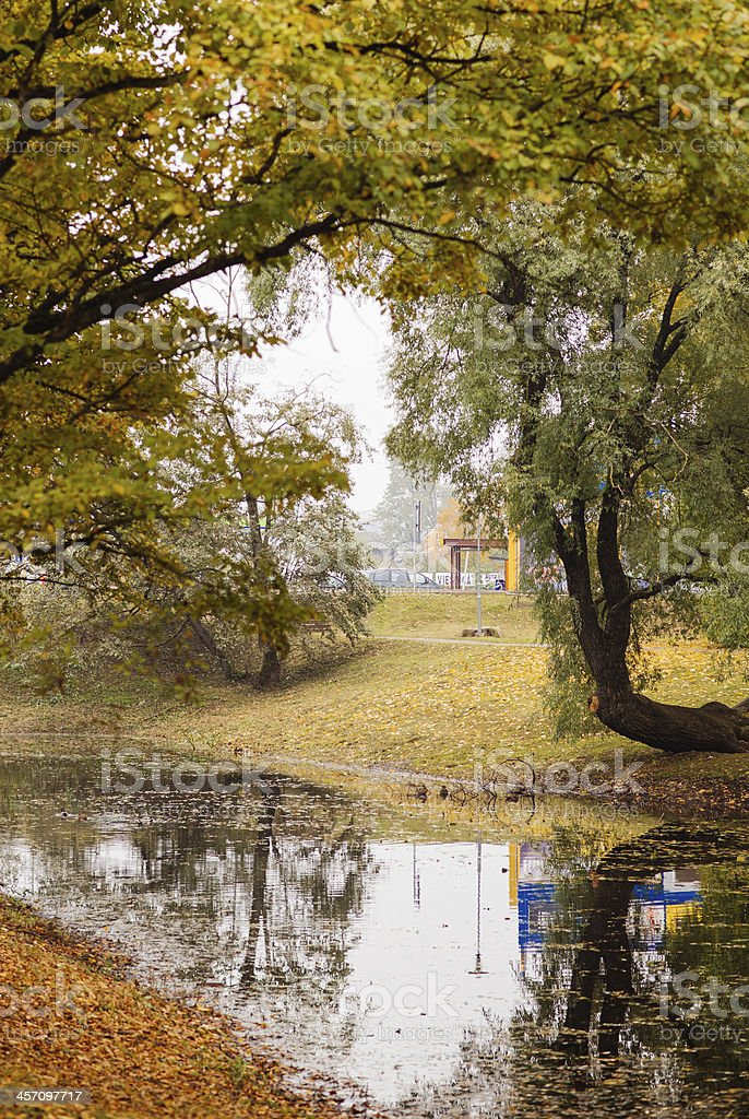 Autumn river royalty-free stock photo