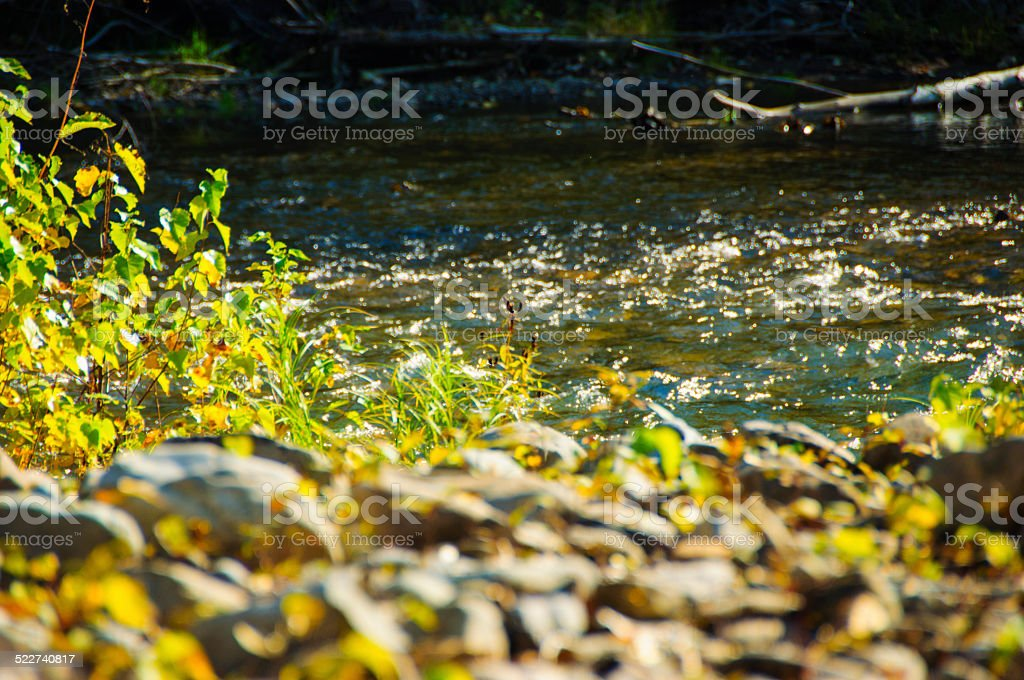 autumn river stock photo