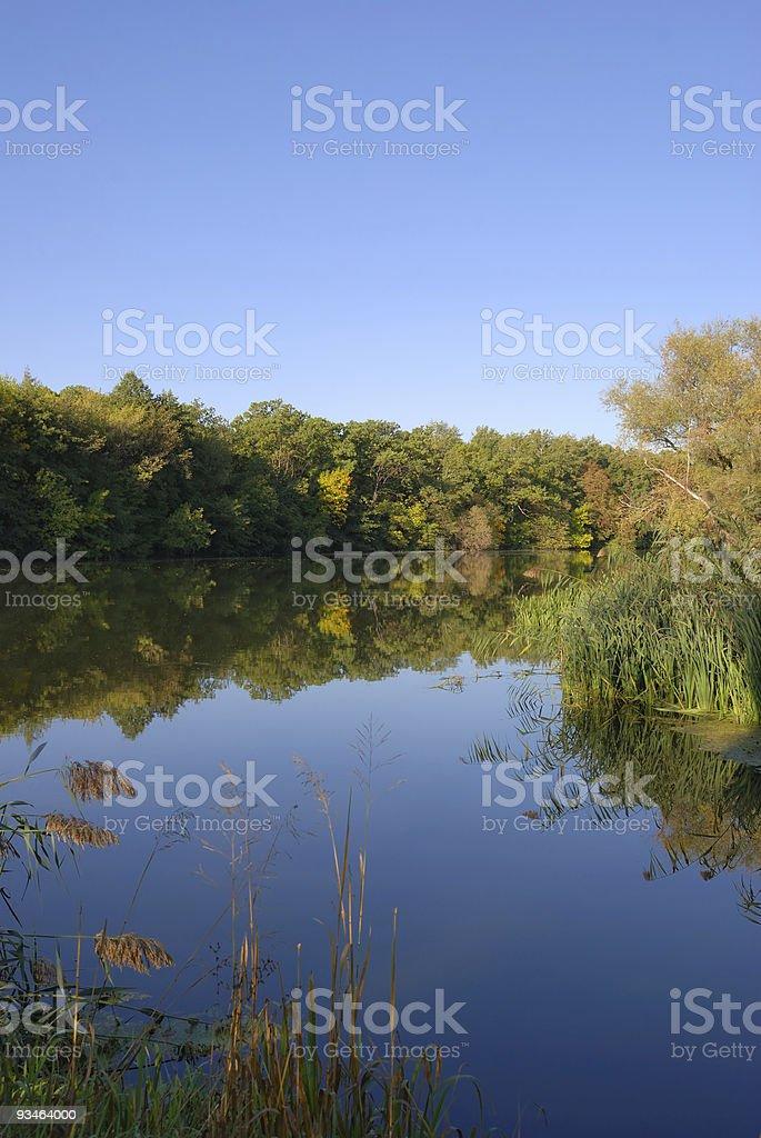 autumn river stock photo