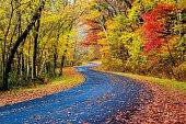 Autumn Road in Ohio