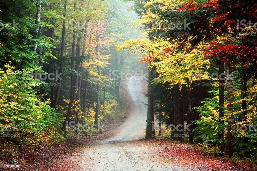 Autumn Road in Rural New Hampshire royalty-free stock photo