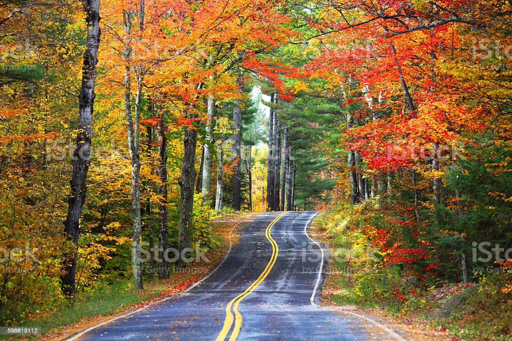 Autumn road in the Adirondacks region of New York stock photo