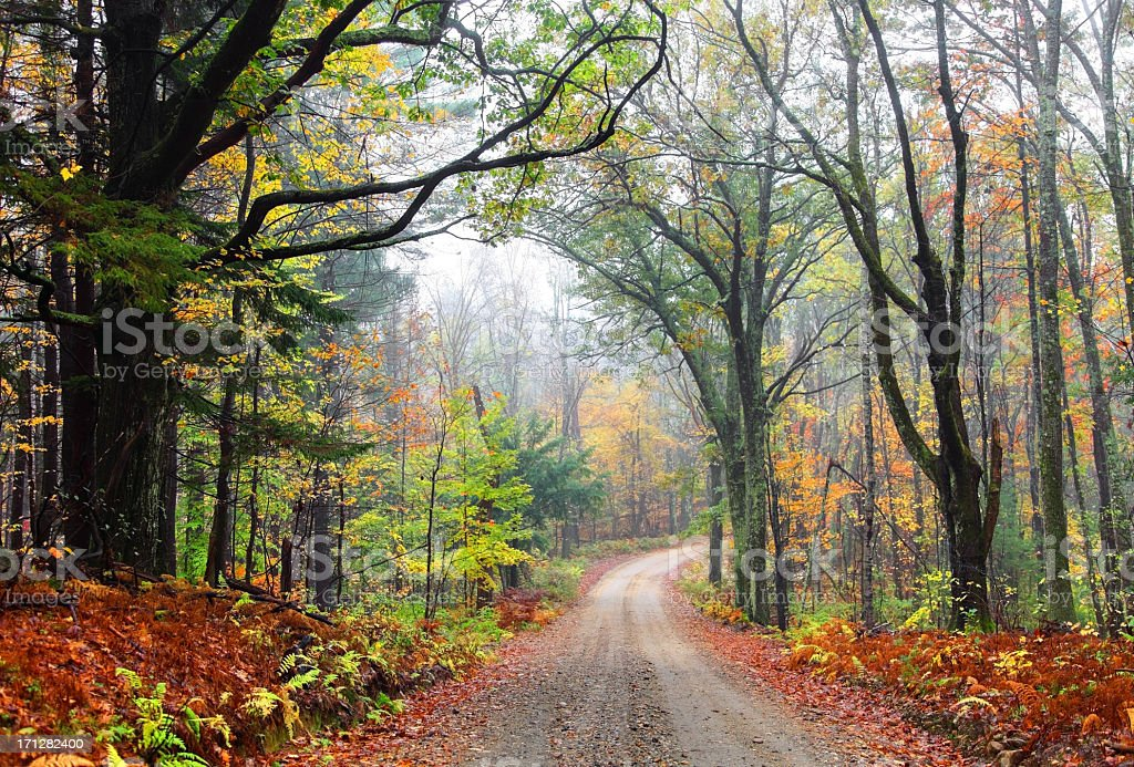Autumn Road in the Asburnham State Forest Massachusetts royalty-free stock photo