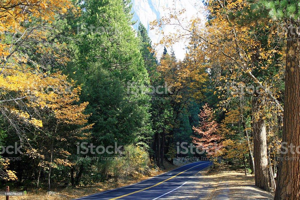 Otoño Road en Yosemite foto de stock libre de derechos