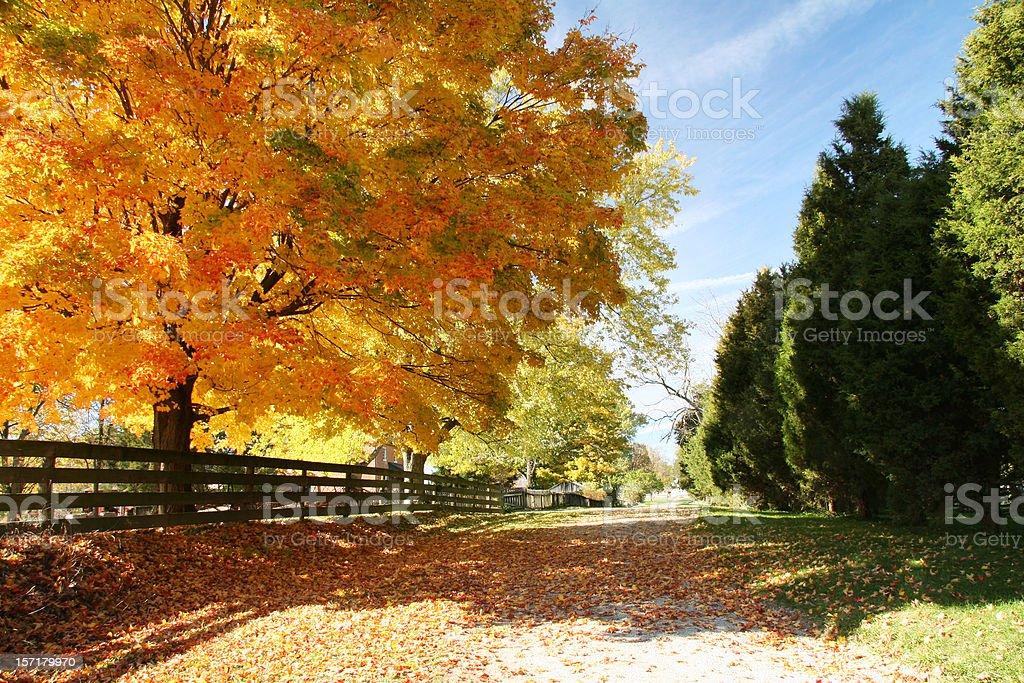 Autumn Road Ohio royalty-free stock photo