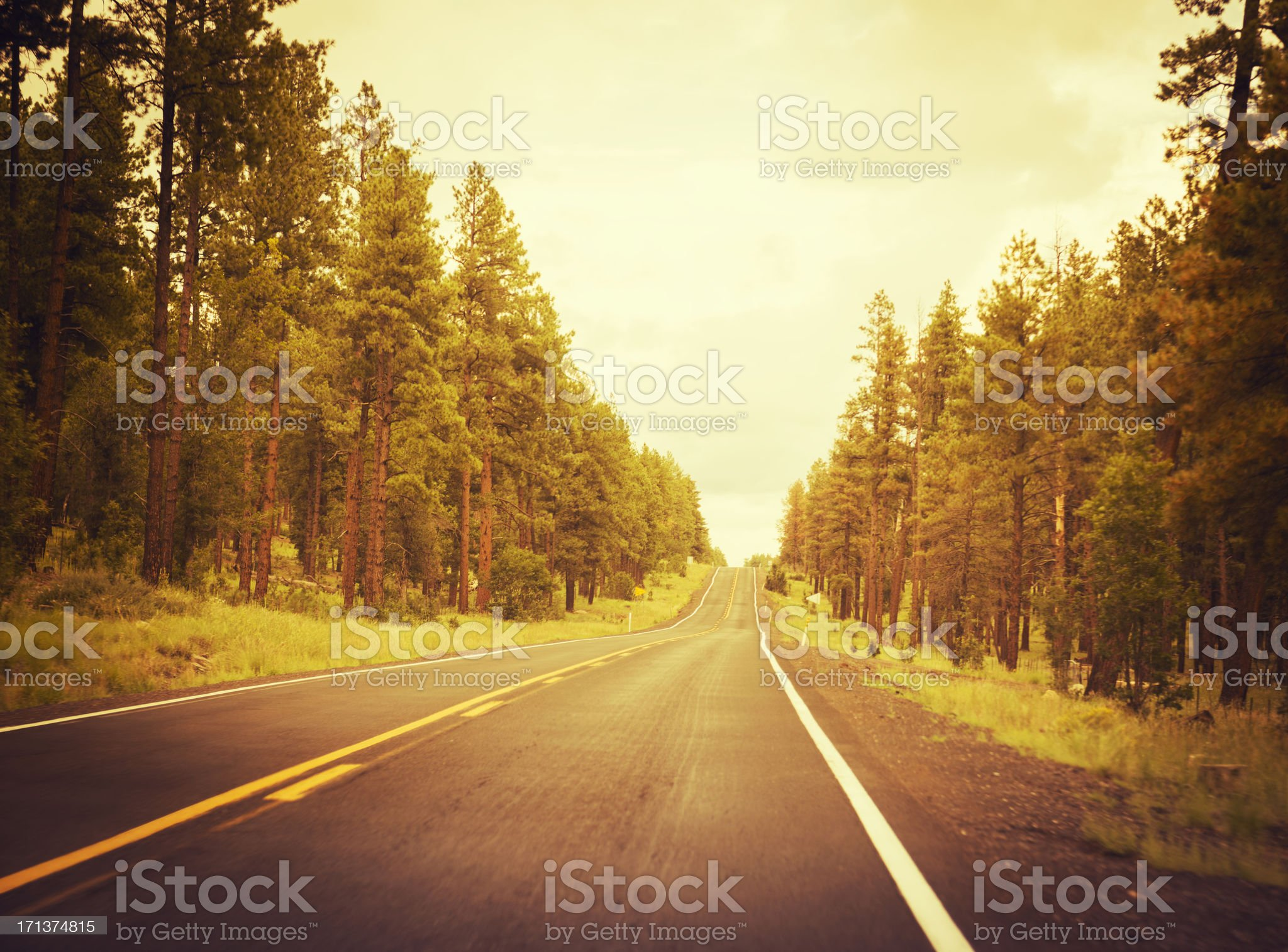 Autumn road on the west USA royalty-free stock photo