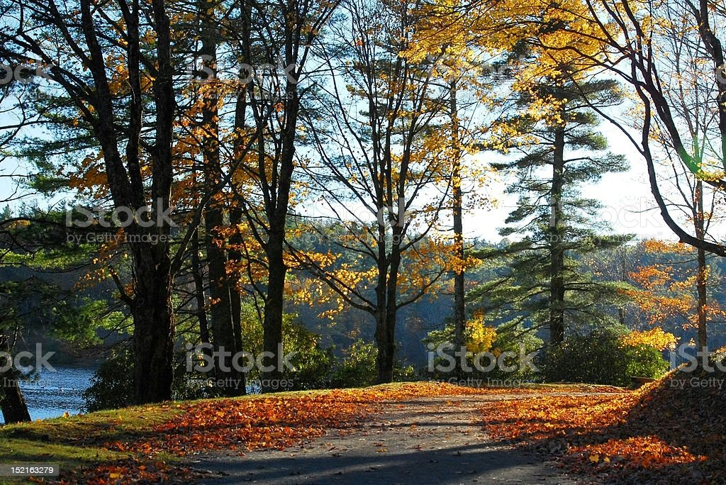 Autumn Road stock photo