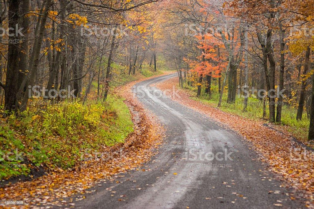 Autumn Road stock photo