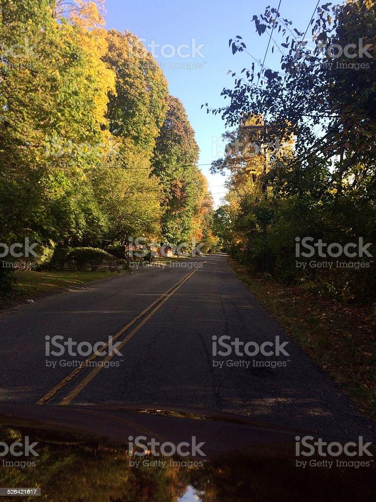 Herbst road Lizenzfreies stock-foto