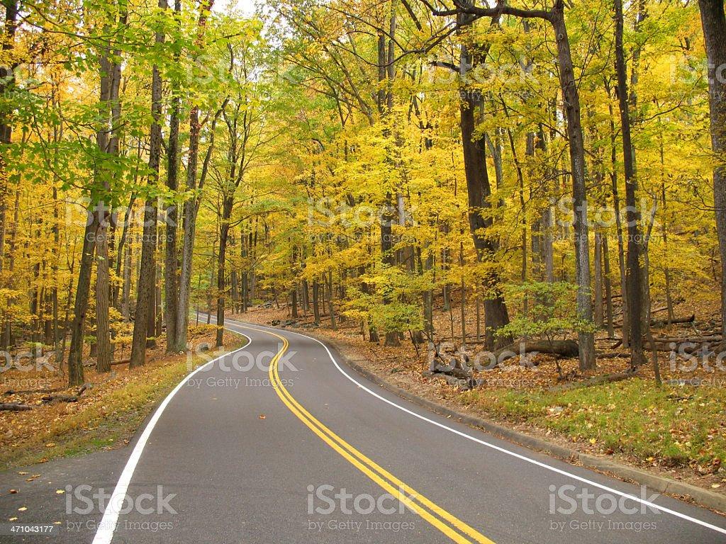 Autumn Road Trip stock photo