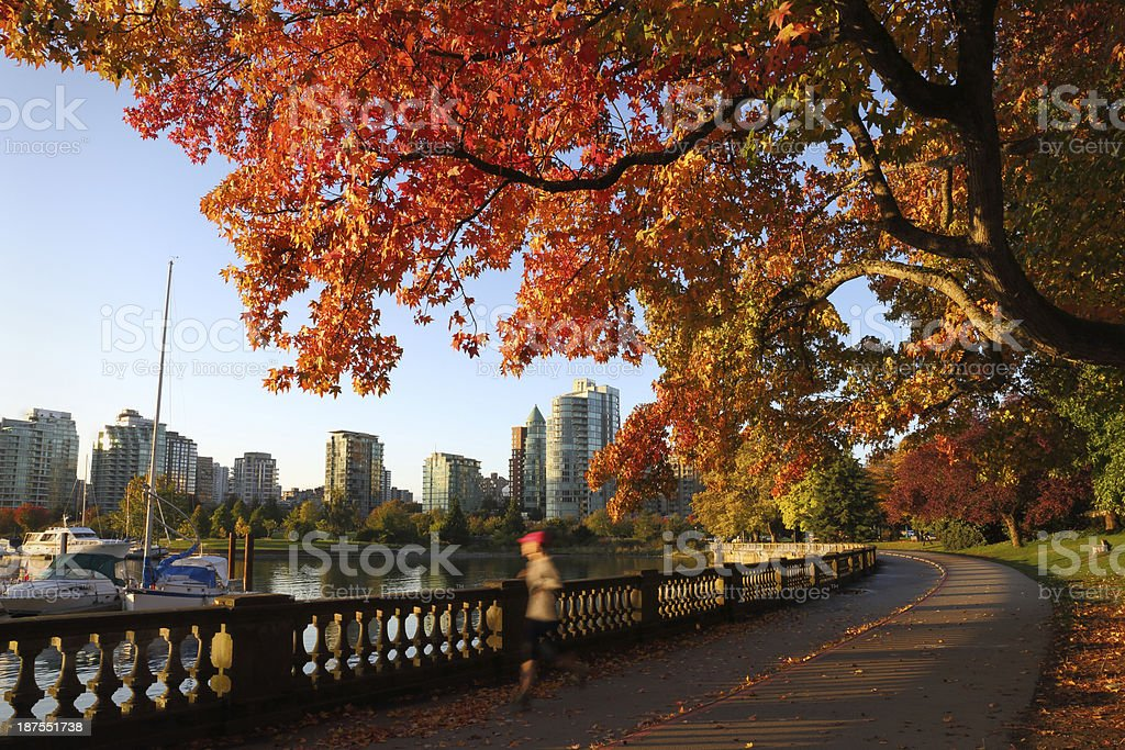 Autumn Run, Stanley Park Seawall, Vancouver stock photo