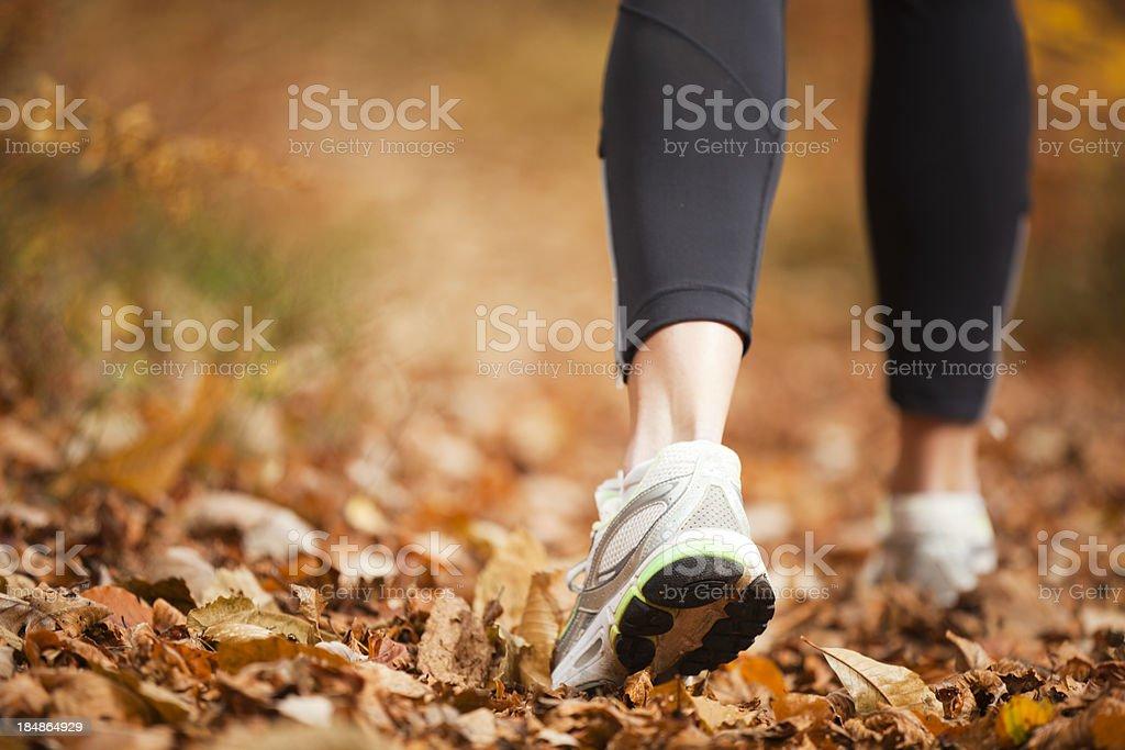 autumn running stock photo