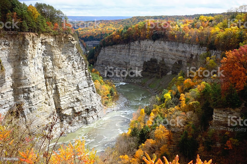 Autumn scene of river and forest stock photo
