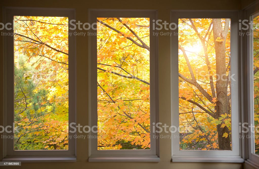 Autumn scene through porch window screens. royalty-free stock photo
