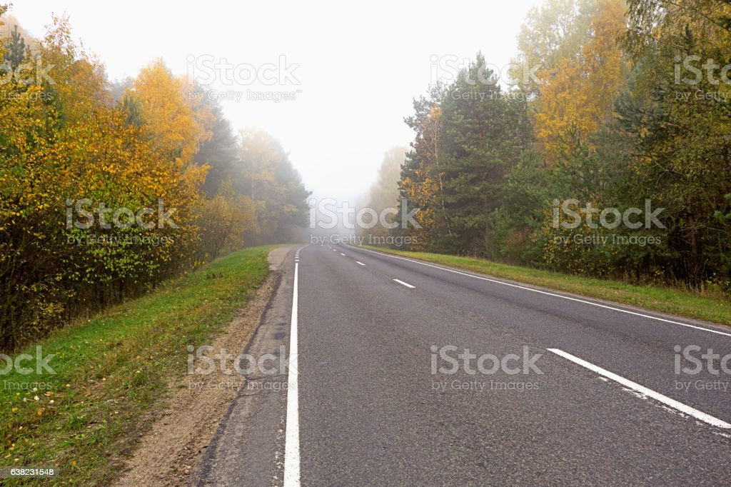 Autumn scenery in the forest outside the city. stock photo