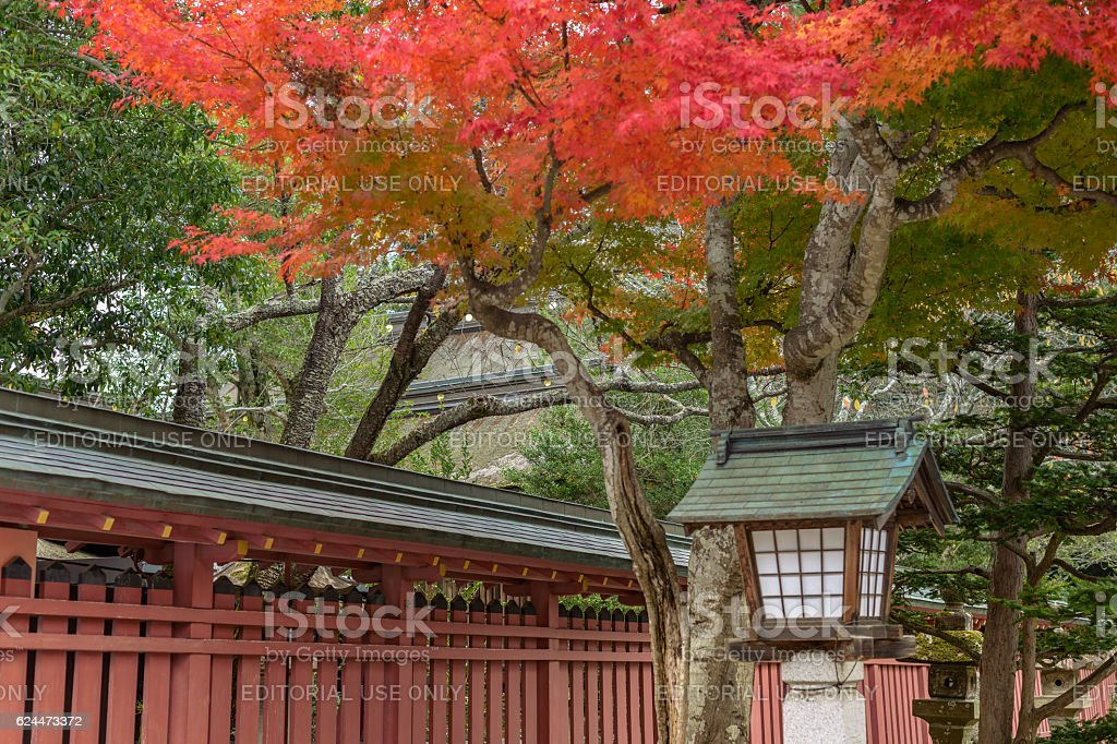 Autumn scenery of the approach to shrine stock photo