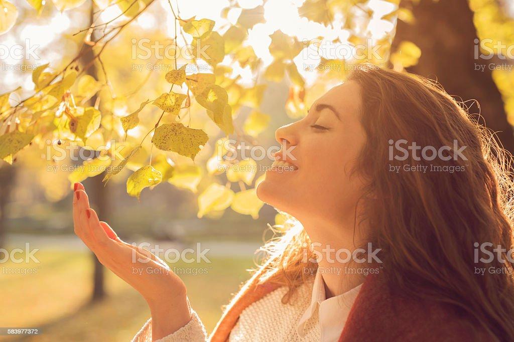 Autumn scents stock photo