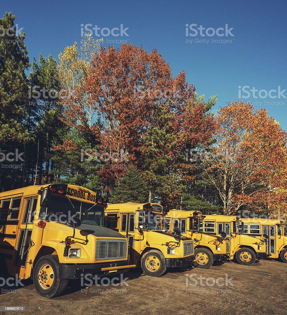 Autumn School Bus Fleet royalty-free stock photo