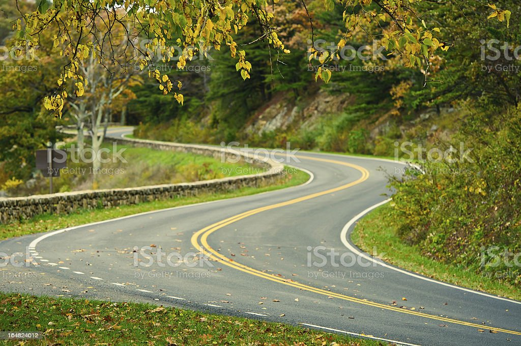 Autumn S-Curved Road royalty-free stock photo