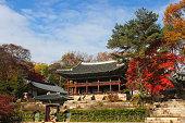 Autumn season in Garden of Changdeokgung Palace South Korea