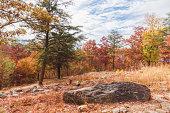 Autumn Season Landscape of a Mountain Top