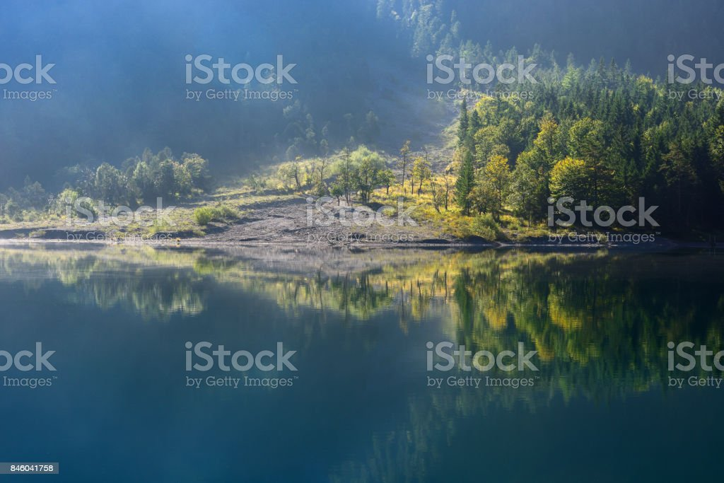 Autumn season theme. Detail of coloured forest. Plansee, Tyrol, Austria. stock photo