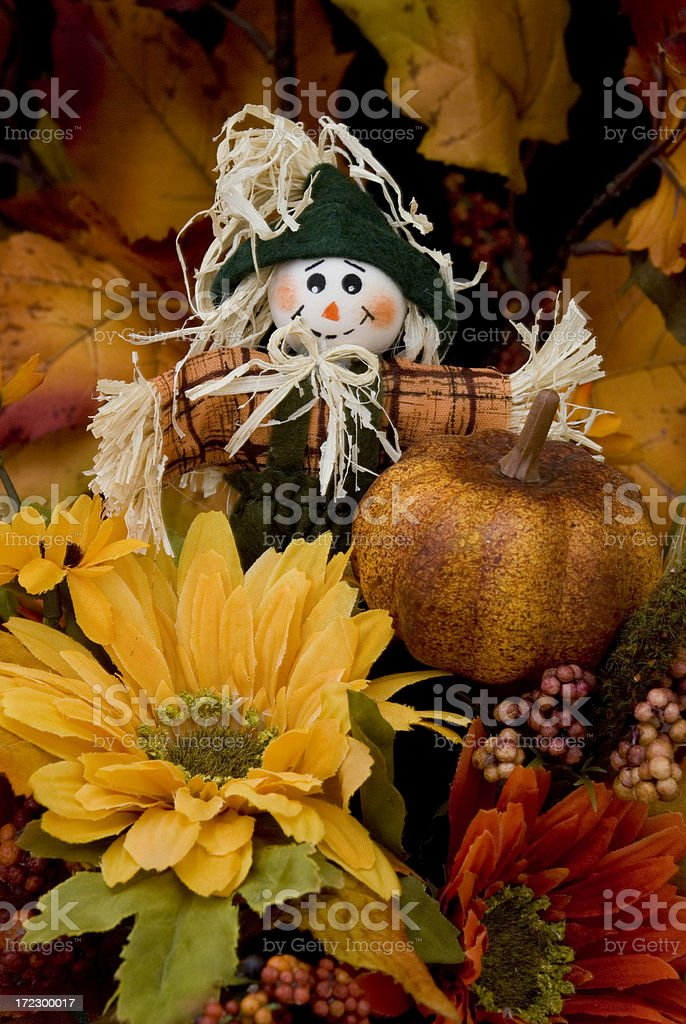 Autumn Series: Scarecrow Flower Arrangement IV royalty-free stock photo