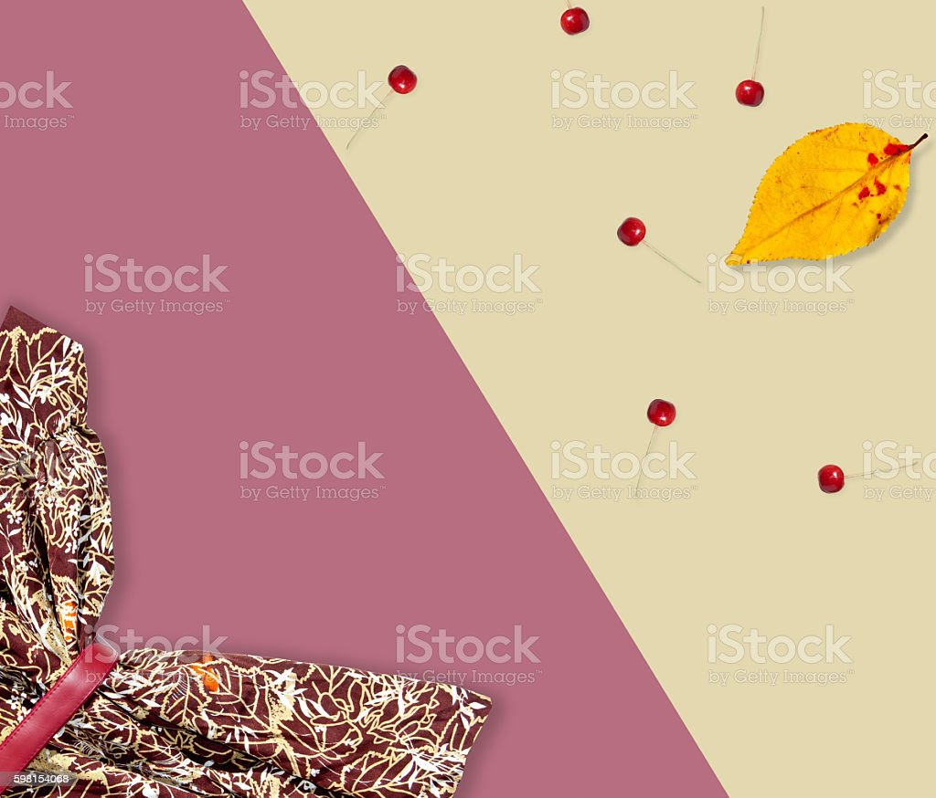 Autumn set. Dress and yellow leaf, apples stock photo