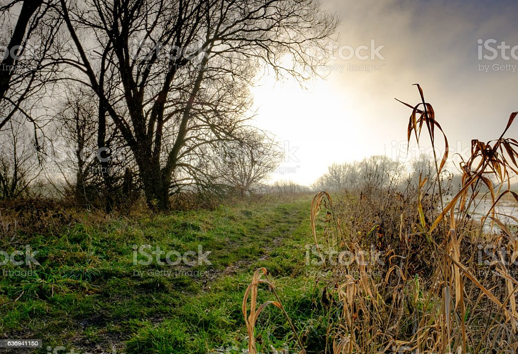 Autumn setting by a riverbank in a rural location stock photo
