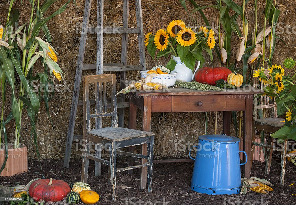 Autumn setting - decoration for Thanksgiving royalty-free stock photo