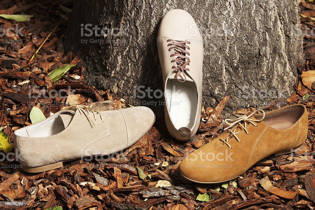Autumn shoes royalty-free stock photo