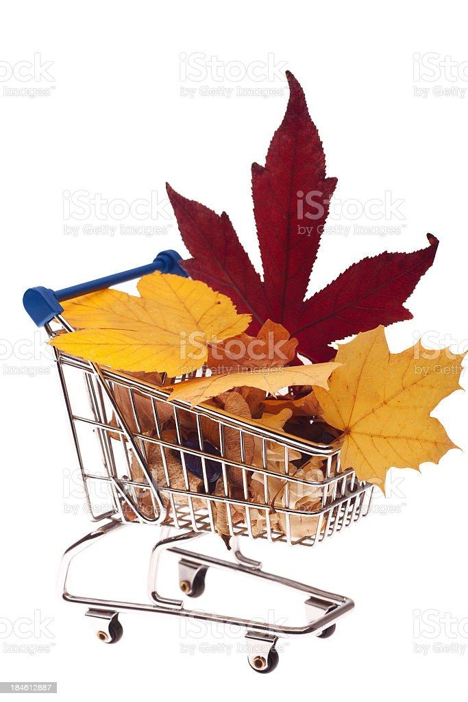 Autumn shopping cart stock photo