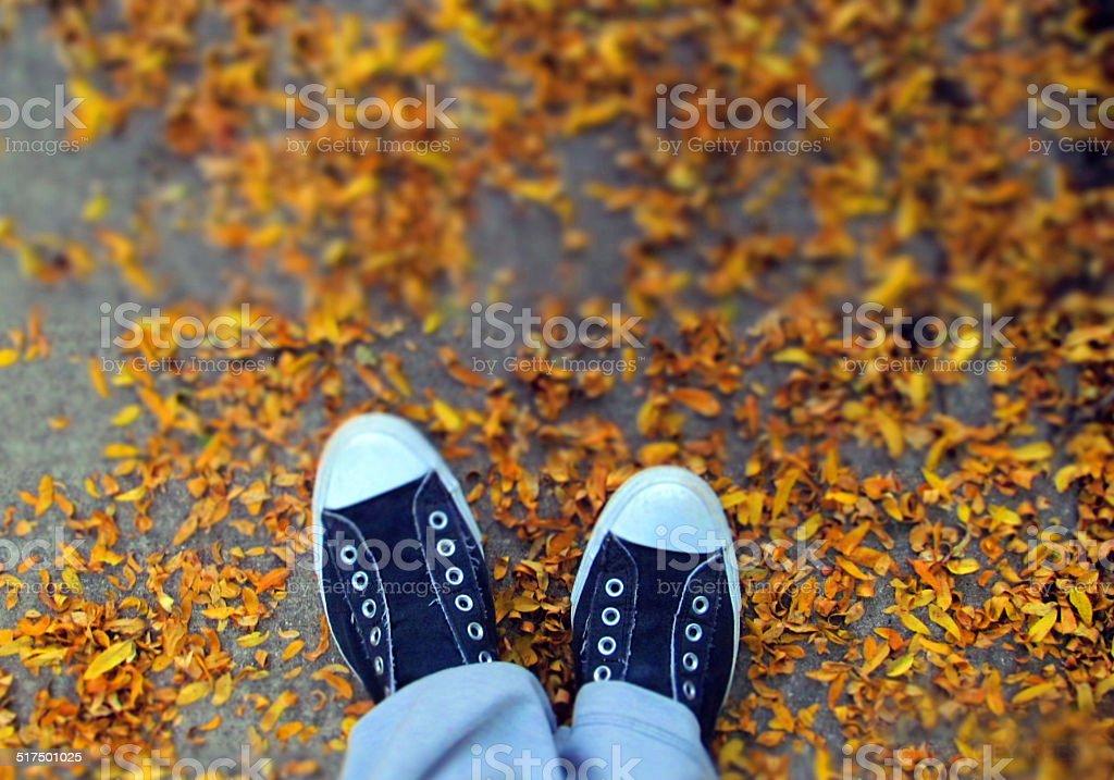 Autumn sneakers stock photo