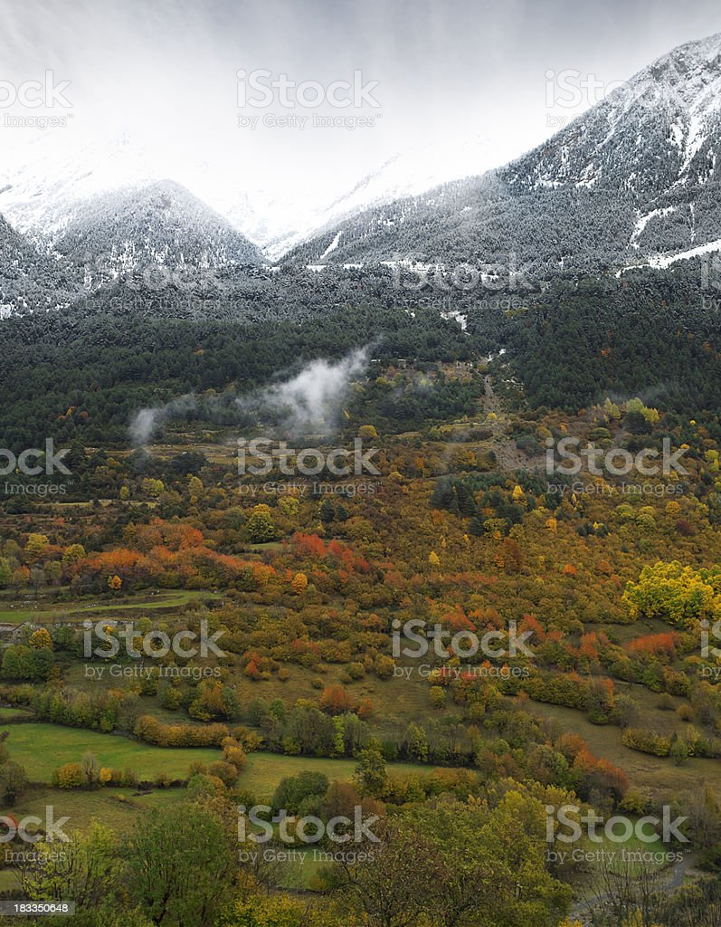 Autumn snowing landscape stock photo