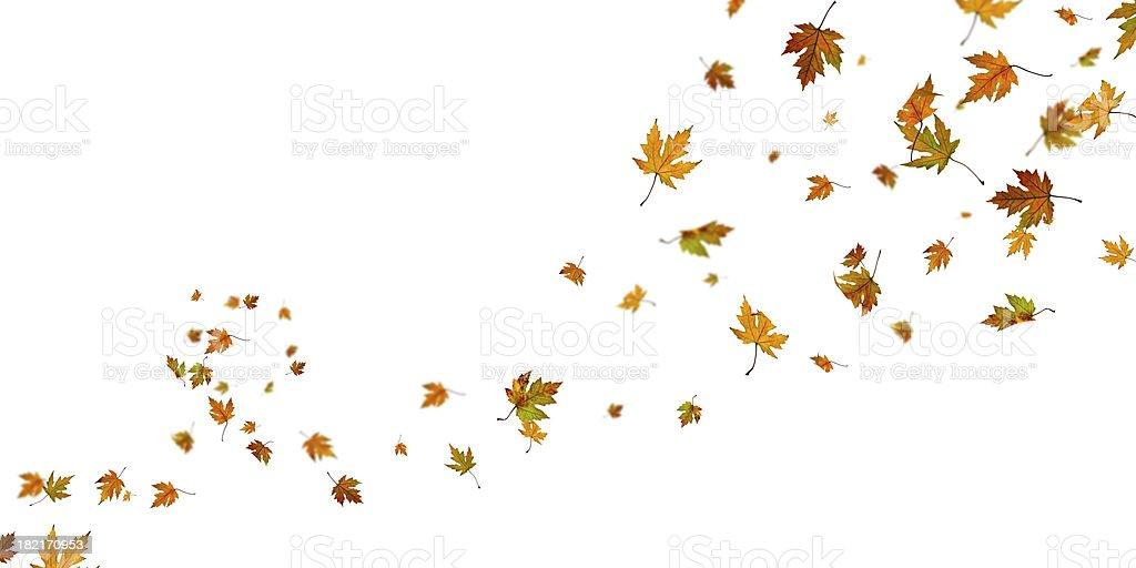 Autumn spin royalty-free stock photo