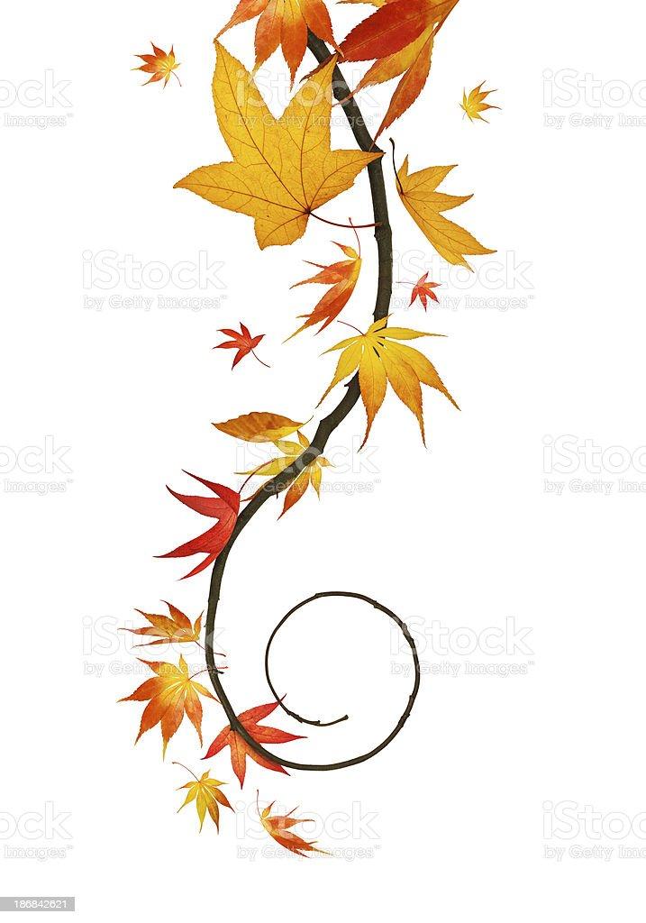 Autumn Spiral royalty-free stock photo