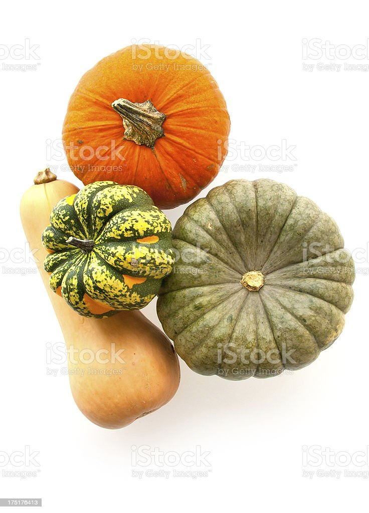 Autumn Squash and Pumpkin royalty-free stock photo