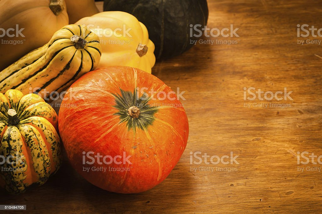 Autumn Squash Still Life with Copy Space stock photo