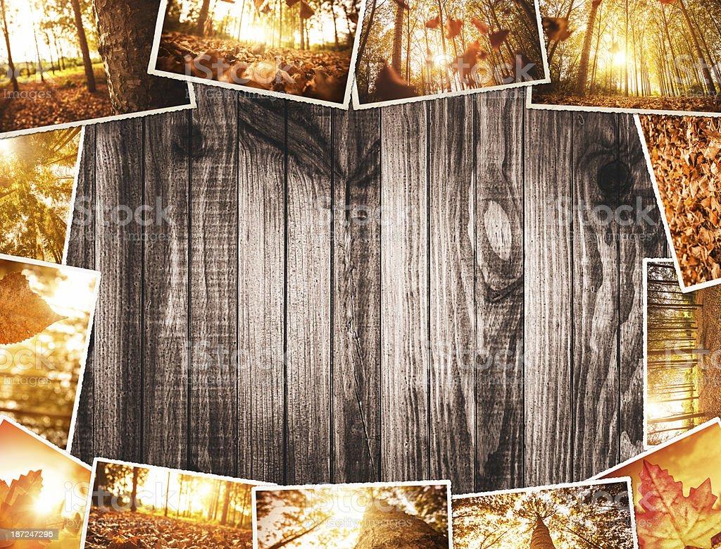 autumn stack of polaroid photos royalty-free stock photo