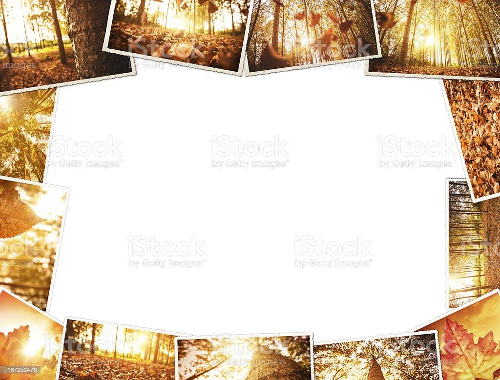 autumn stack of polaroid photos stock photo