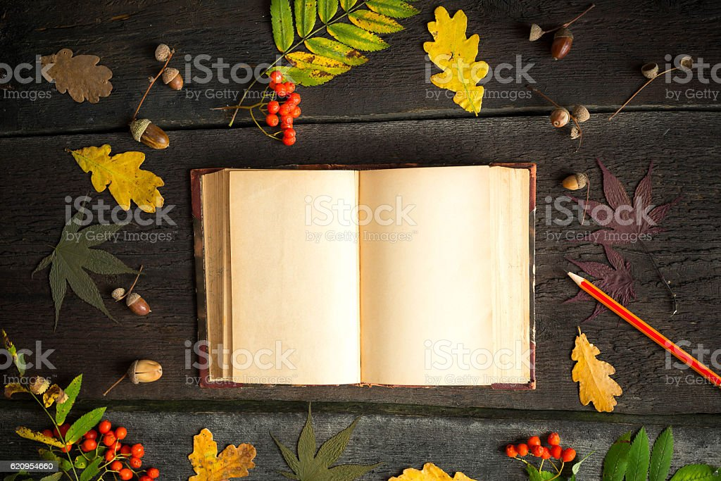 Autumn still life. Open vintage notebook with pencil autumn leaves stock photo