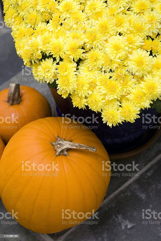 Autumn Still Life royalty-free stock photo