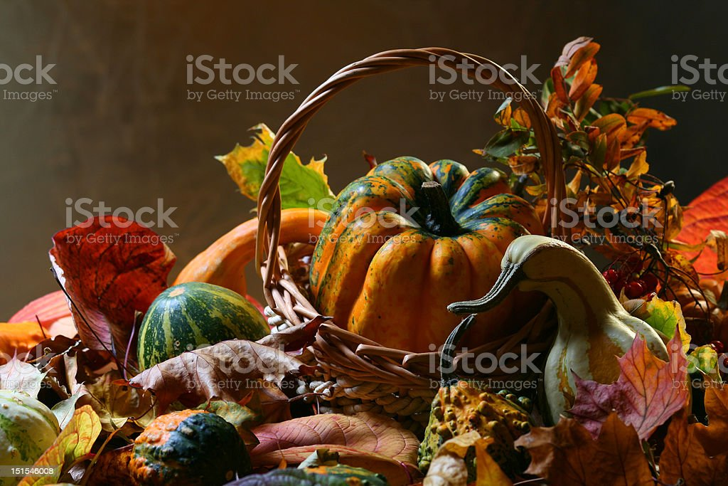 Autumn still life with pumpkins royalty-free stock photo