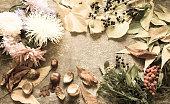 Autumn still life/toned photo